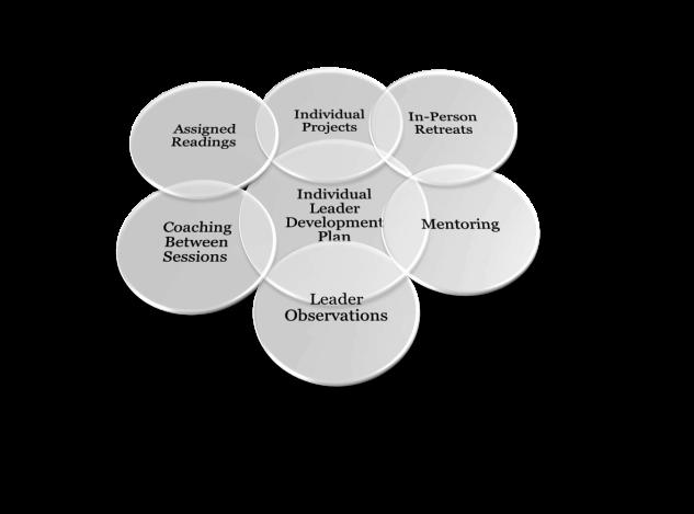 Leader Institute Model